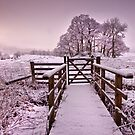 Gateway to a Lakeland winter by Shaun Whiteman
