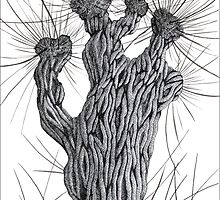 Pollard Willow Tree - Pen Drawing by RainbowArt