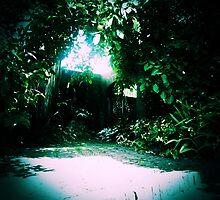 Secret Garden - Gateway (3) by Michelle  Evans-Catherall