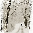 Winter Walk by Jessica Jenney
