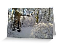 """""""Orchestral snowstorm"""" Greeting Card"""