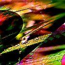 Flowerdreams by cloude-vigal