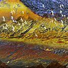 abstract 122 by haya1812
