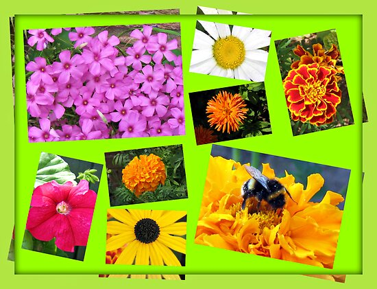 Essex Summer Flowers Collage by BlueMoonRose