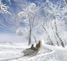 Winter Day by Igor Zenin
