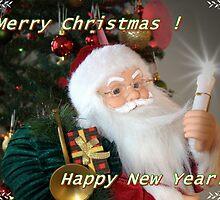 Merry Christmas & Happy New Year ! by LudaNayvelt