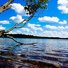 Star Lake, WI (2) by jwphoto1214