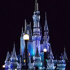 Cinderella's Castle At Night by Philip  Brown
