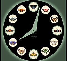 Butterfly O'Clock (Green) by Mark Podger
