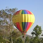 Balloons Rising by Photos55