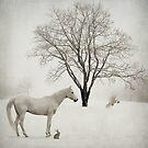 Seasons Greetings by Laura Palazzolo