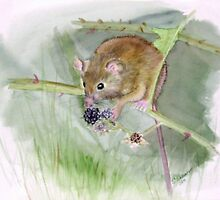 """""""Field Mouse"""" by sooziii"""