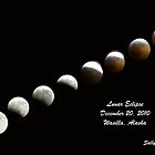 Lunar Eclipse, December 20, 2010 by Sally Winter