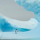 Antarctica by David Burren