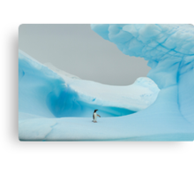 All alone in the ice Canvas Print