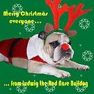 Merry Christmas by brotbackgeraet