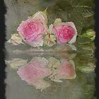 Rose card    3       by julie anne  grattan