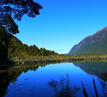 Mirror Lakes : Milford Sound : New Zealand by webgrrl