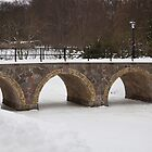 Bridge over frozen water by imagic