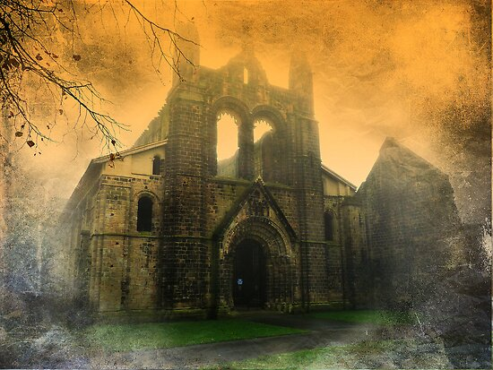 Kirkstall Abbey by Colin Metcalf