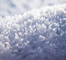 The Ice Crystals by TREVOR34