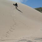 Wild Adventure in the Dunes by wilderness