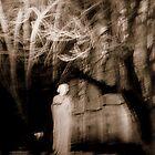 Spiritus Sanctus by lilynoelle