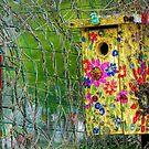 Hippie House by wiscbackroadz