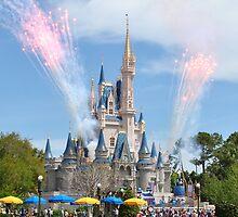 Disney Castle by Bill Colman