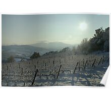 Snowy Vineyard Poster