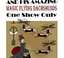Dr. D.H. Dachsteam and his Magic Flying Dachshunds by Diana-Lee Saville