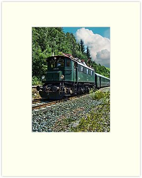 The Pinzgauer Railway by Colin Metcalf