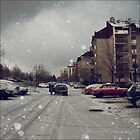 Winter again  by Metadea