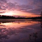 Time to Reflect by SDImages