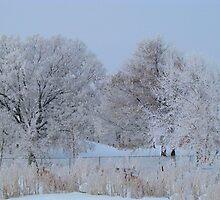 Beauty Behind The Fence by Linda Miller Gesualdo