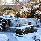 Frozen Waterfall,Kilsyth,Scotland by Jim Wilson