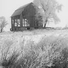 Barn in Winter Frost 170 by Randall Nyhof