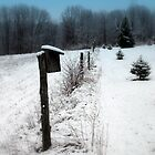 Winter Home by Renee Blake