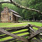Oliver Cabin Cade&#x27;s Cove by Randall Nyhof