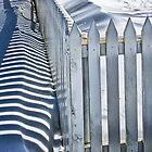 Picket Fence in Winter 1442 by Randall Nyhof