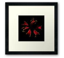 Glory Lily Framed Print