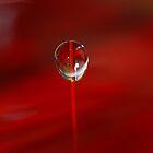 Red Fire~ Macro Waterdrop Wall Art by bfphotoart