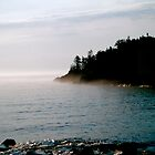 Minnesota North Shore Fog by A. Kakuk