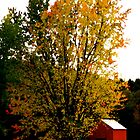 Vermont Countryside by A. Kakuk