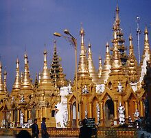Schwedagon, Rangoon (Yangon) by tripi100