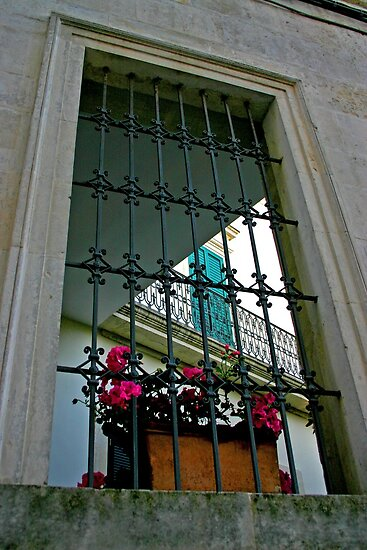 Door in Window - Maglie Italy by Debbie Pinard