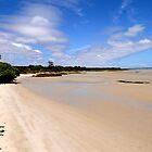 Shark's Bay  by TannFotografia
