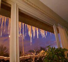 Winter 2010 - Belgium by Gilberte