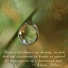 The Determined Soul ~Original Inspirational Macro Waterdrop Wall Art by bfphotoart
