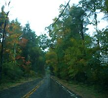 Driving in the blinding rain, Vermont by RonnieGinnever